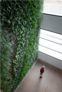 verticalgardens.co.il_7